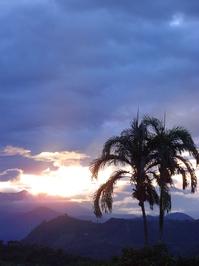 Jardin sunset