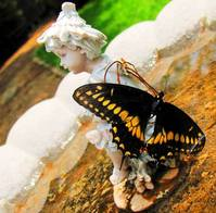 Statue and Butterfly 2
