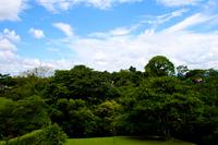 Colombian Landscape