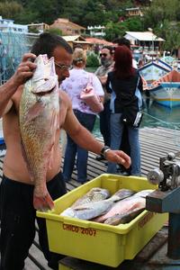 Fisherman (Second Edition) 3