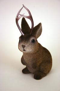 horned rabbit