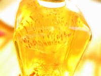 Flower inside the bottle