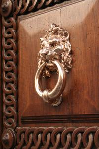 Lion Door 2