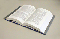 Open Book1