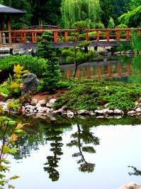 japanese garden in Wroclaw