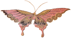 Brocade Butterfly